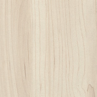 Melamina NC Champagne Hard Maple